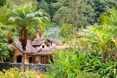 Boquete valle Escondido hus i djungeln Royaltyfri Bild