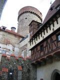 Bor del ¡de TÃ - República Checa Imagen de archivo libre de regalías