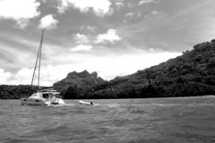 Bora Bora royalty-vrije stock afbeelding
