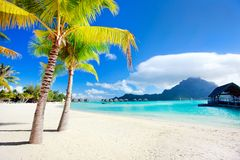 Bora Bora beach. Beautiful beach with a view of Otemanu mountain on Bora Bora island Stock Photography