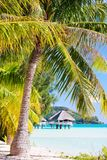 Bora Bora beach Stock Image