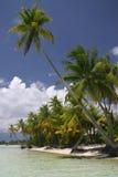 Bora Bora beach Stock Images
