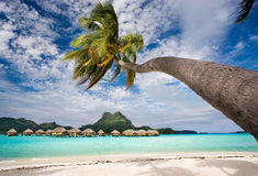 Bora bora beach resort stock image