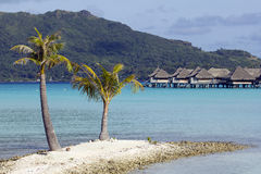 Bora bora bungalows royalty free stock photography