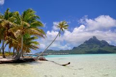 Bora Bora, french polynesia Royalty Free Stock Photo