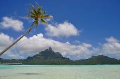 Bora Bora, french polynesia Royalty Free Stock Photography
