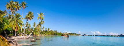 Bora Bora panorama Royalty Free Stock Image