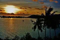 Bora Bora, Tropical sunset with palms stock images