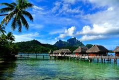 Bora Bora, Overwater Bungalows. Palms extending over crystal clear water with overwater bungalows with views of Mountain stock photography