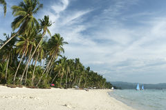 Boracay beach palm tress philippines. Palms trees and white sand of boracay island in the philippines Stock Photo