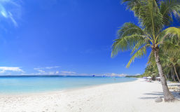 Boracay island white sand beach tropical resort philippines. Panoramic view of white beach with coconut palm trees on boracay island in the philippines. Boracay Royalty Free Stock Photo