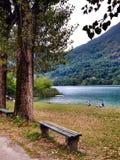 Boracko湖在科尼茨,波黑 图库摄影
