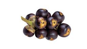 Borassus Flabellifer-Frucht Stockfotografie