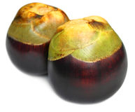 Borassus flabellifer or Tal fruit. Of Indian subcontinent Royalty Free Stock Photos