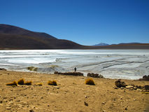 Borax mines in andean lagoon Royalty Free Stock Photo