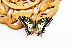 Borboleta Imagens de Stock Royalty Free