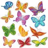 borboleta Fotografia de Stock