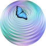 A borboleta azul que faz ondinhas na pousa-copos da água bebe a face do relógio da esteira Fotos de Stock Royalty Free