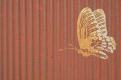 Borboleta birdwing comum no fundo velho do zinco imagem de stock royalty free