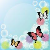 Borboleta colorida Fotografia de Stock Royalty Free