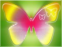 Borboleta colorida Fotos de Stock Royalty Free