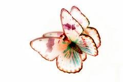 Borboleta colorida brilhante em um fundo branco Imagens de Stock Royalty Free