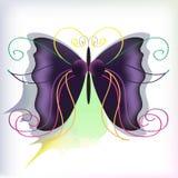 A borboleta da cor Imagem de Stock