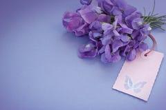 Borboleta da etiqueta das ervilhas doces do ramalhete Fotografia de Stock Royalty Free