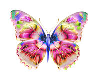 Borboleta Design Imagens de Stock