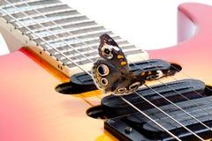 Borboleta do Buckeye em uma guitarra elétrica Foto de Stock