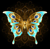 Borboleta dourada com turquesa Fotografia de Stock Royalty Free