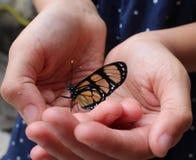 A borboleta e a menina imagem de stock