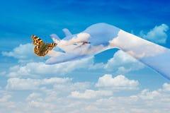 A borboleta em suas mãos Fotos de Stock