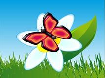 Borboleta em uma flor Ilustração do Vetor