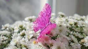 A borboleta está sentando-se em um ramalhete das flores brancas Foto de Stock