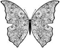 Borboleta exótica. ilustração royalty free