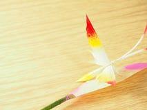 A borboleta feita das folhas secadas da palma de nipa, pinta multicolorido nas folhas brancas Foto de Stock