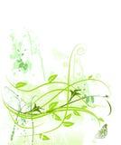 Borboleta floral da natureza do crescimento do grunge do teste padrão Foto de Stock
