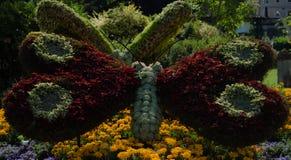 Borboleta gigante da flor Fotografia de Stock Royalty Free