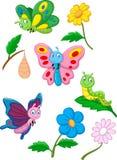 Borboleta, lagarta e casulo dos desenhos animados Fotografia de Stock Royalty Free