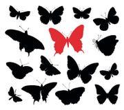 A borboleta mostra em silhueta a coleção Fotografia de Stock Royalty Free