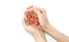 Borboleta nas mãos Foto de Stock