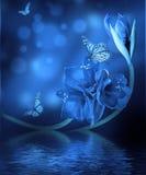 Borboleta no fundo colorido Imagens de Stock Royalty Free