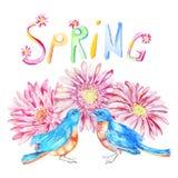 Borboleta, pássaro, flores Objeto da aquarela Fotos de Stock