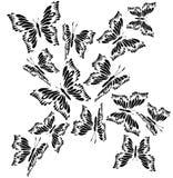 Borboleta preto e branco de vibração Imagens de Stock Royalty Free