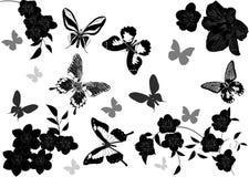Borboletas cinzentas e pretas acima das flores Foto de Stock