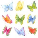 Borboletas coloridas da aquarela Imagem de Stock