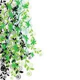 Borboletas com as plantas isoladas no fundo Imagens de Stock