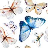 Borboletas da aquarela, teste padrão floral sem emenda do vintage Imagens de Stock