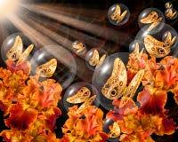 Borboletas de bronze nos globos de cristal Imagem de Stock